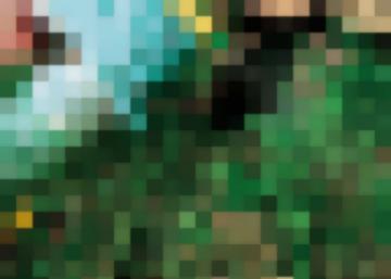 Защита Огорода И Сада-Используйте Растительные «Ядохимикаты»