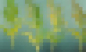 Болезни Овощных Культур (Болезни Моркови) Бурая Пятнистость Листьев