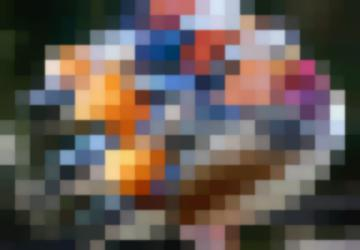 Мандари́нка (Лат. Aix Galericulata) — Птица Семейства Утиных