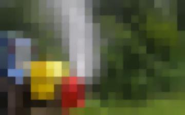 Опрыскиватель Вентиляторный Навесной Садовый Овс-600
