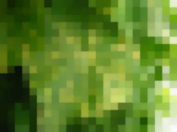 Болезни Овощных Культур (Болезни Моркови) Черная Гниль (Альтернариоз)